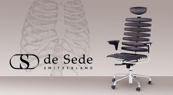 banner_de_sede_skeleton2