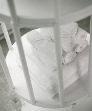 Cell-1-1144.jpg